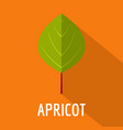 apricot leaf icon flat style vector image vector image