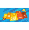 Big sale and discounts banner vector image vector image
