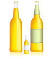 bottle of beer low alcohol beverage vector image