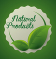 natural product vector image vector image