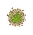 realistic hemp seeds with leaf marijuana bunch vector image vector image