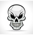 skull on white background vector image