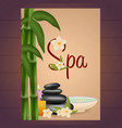 spa salon poster with stones thai massage wood vector image vector image