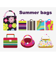 summer bags vector image vector image