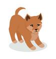 dingo cartoon flat vector image