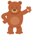cute bear cartoon animal character vector image vector image