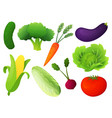 fresh vegetable set healthy diet flat vector image
