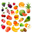 fruits and berries set flat icons vector image