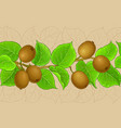 kiwi branches pattern on color background vector image