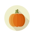 Pumpkin flat icon with long shadow vector image vector image