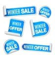 Winter Sale Labels vector image