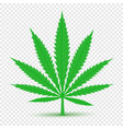 cannabis icon transparent background vector image