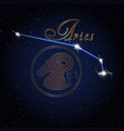 aries astrology constellation of the zodiac vector image vector image