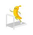 flat banana character running on treadmill vector image vector image
