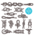 Rope Knots Sketch Set vector image