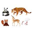 set different animals cartoon design flat vector image vector image