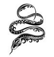 Snake vector image