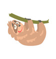 cute cartoon sloth character hanging on the tree vector image vector image