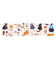 cute cats in spooky halloween costumes set funny vector image vector image