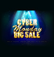 cyber monday sale promotion banne vector image vector image