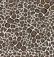 giraffe skin pattern vector image vector image
