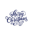 merry christmas lettering text vector image
