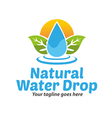 Natural Water Drop Logo vector image vector image