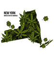 new york usa cannabis print design vector image