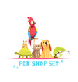 pet shop composition vector image vector image