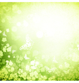 spring or summer vector image