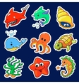 the different sea creatures vector image