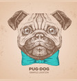 retro hipster animal pug-dog hand drawing muzzle vector image vector image