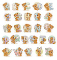 set letters english alphabet vector image