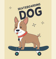 skateboarding dog for t-shirt and print design vector image
