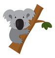 Smiling Cute Cartoon Koala on Branch vector image