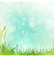 spring or summer meadow vector image vector image