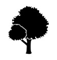 tree nature isolated vector image vector image
