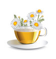chamomile herbal tea in a transparent cup vector image