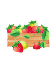 fruit icon strawberry white background imag vector image