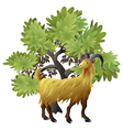Goat with tree vector image vector image