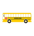 school bus yellow vector image