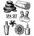 spa salon set ink hand drawn vector image vector image