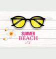summer tropical beach club background vector image