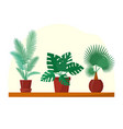 tropical plants and palms set in flat style home vector image