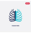 two color human ribs icon from human body parts vector image vector image