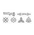 beauty and spa logo design linear label with vector image vector image