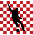football Croatia flag vector image vector image