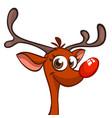 funny cartoon red nose reindeer character vector image vector image