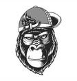 gorilla wearing a hat vector image vector image