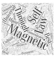 LAWS OF MAGNETIC DEVELOPMENT Word Cloud Concept vector image vector image